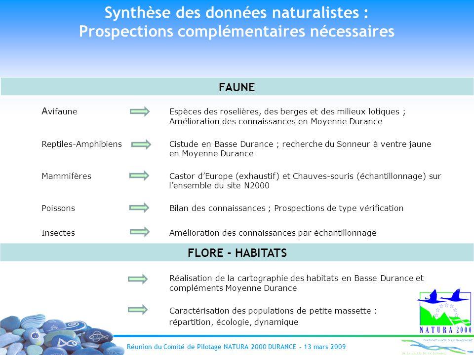 Réunion du Comité de Pilotage NATURA 2000 DURANCE – 13 mars 2009 A vifaune Espèces des roselières, des berges et des milieux lotiques ; Amélioration d