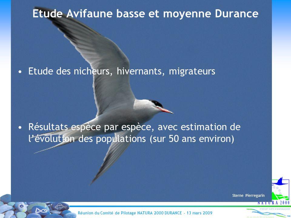 Réunion du Comité de Pilotage NATURA 2000 DURANCE – 13 mars 2009 Etude Avifaune basse et moyenne Durance Etude des nicheurs, hivernants, migrateurs Ré