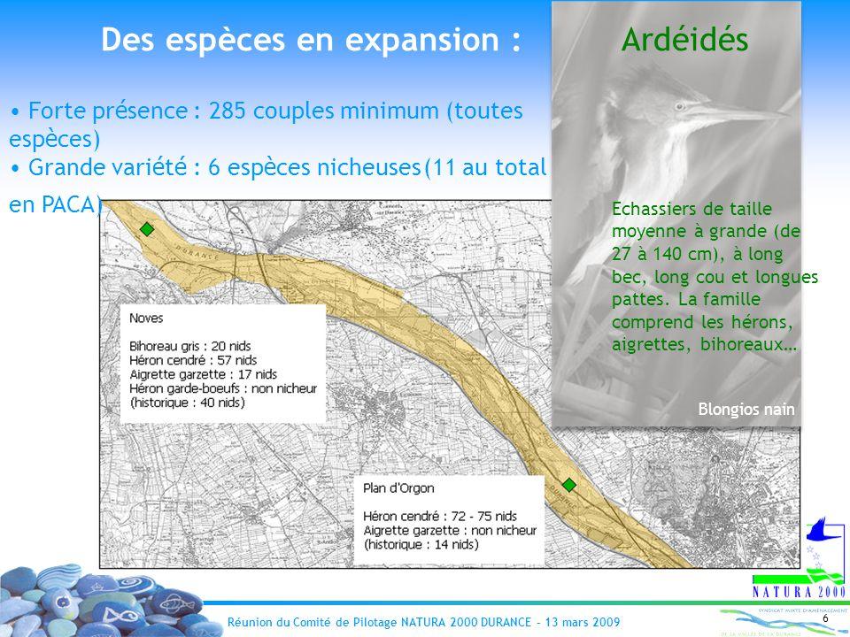 Réunion du Comité de Pilotage NATURA 2000 DURANCE – 13 mars 2009 6 Forte pr é sence : 285 couples minimum (toutes esp è ces) Grande vari é t é : 6 esp