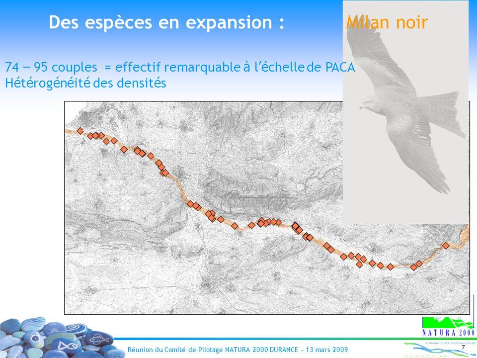 Réunion du Comité de Pilotage NATURA 2000 DURANCE – 13 mars 2009 7 Des espèces en expansion : Milan noir 74 – 95 couples = effectif remarquable à l é