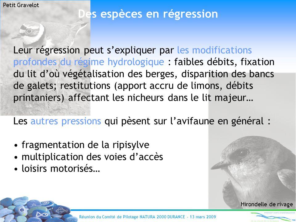 Réunion du Comité de Pilotage NATURA 2000 DURANCE – 13 mars 2009 Des espèces en régression Leur régression peut sexpliquer par les modifications profo