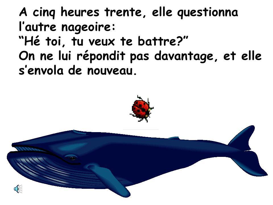 A cinq heures et quart, la coccinelle interpella une des nageoires de la baleine, Hé toi, tu veux te battre.