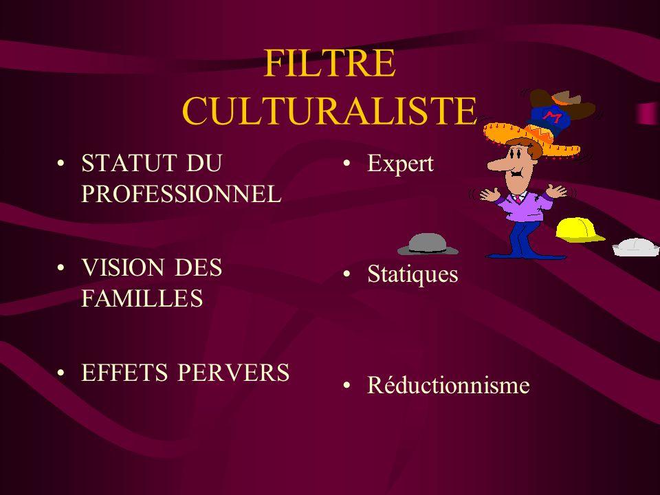 FILTRE CULTURALISTE STATUT DU PROFESSIONNEL VISION DES FAMILLES EFFETS PERVERS Expert Statiques Réductionnisme