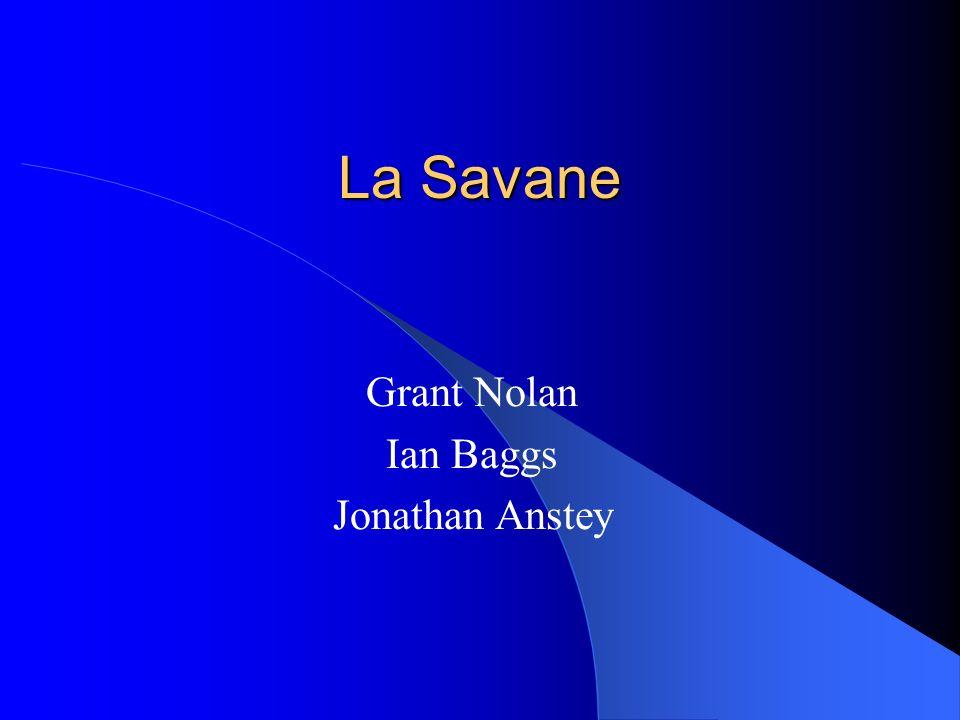 La Savane Grant Nolan Ian Baggs Jonathan Anstey