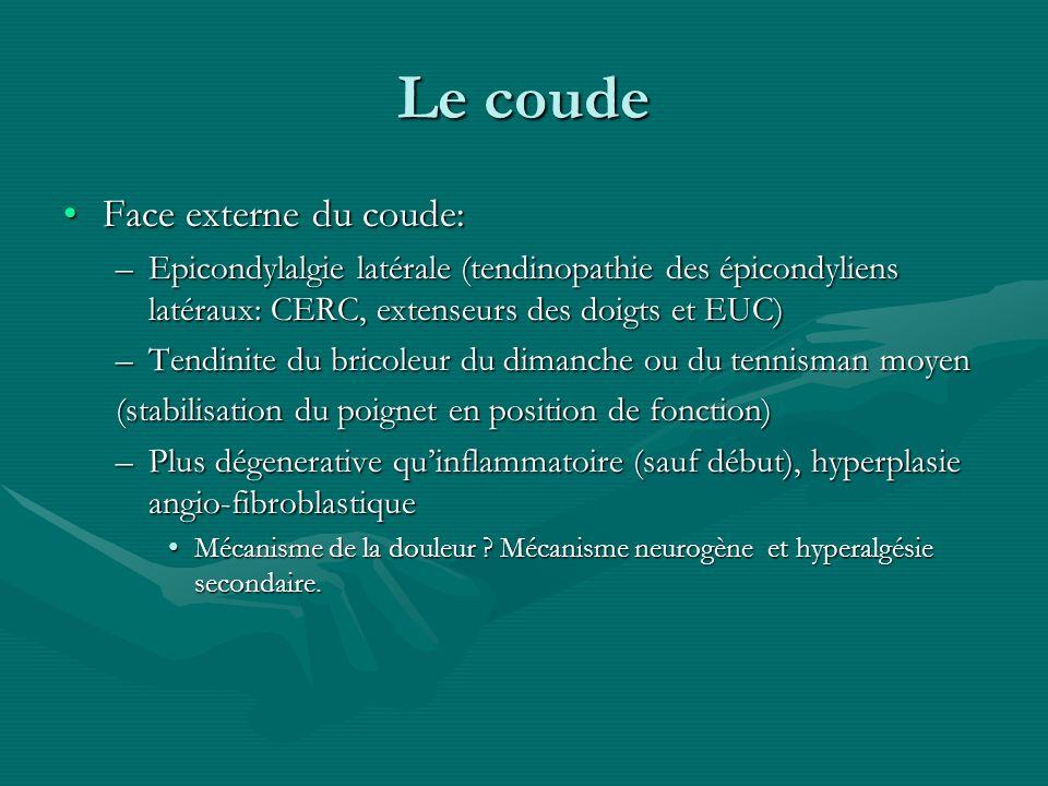 Le coude Face externe du coude:Face externe du coude: –Epicondylalgie latérale (tendinopathie des épicondyliens latéraux: CERC, extenseurs des doigts