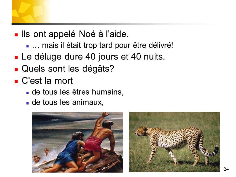 24 Ils ont appelé Noé à laide. … mais il était trop tard pour être délivré! Le déluge dure 40 jours et 40 nuits. Quels sont les dégâts? C'est la mort