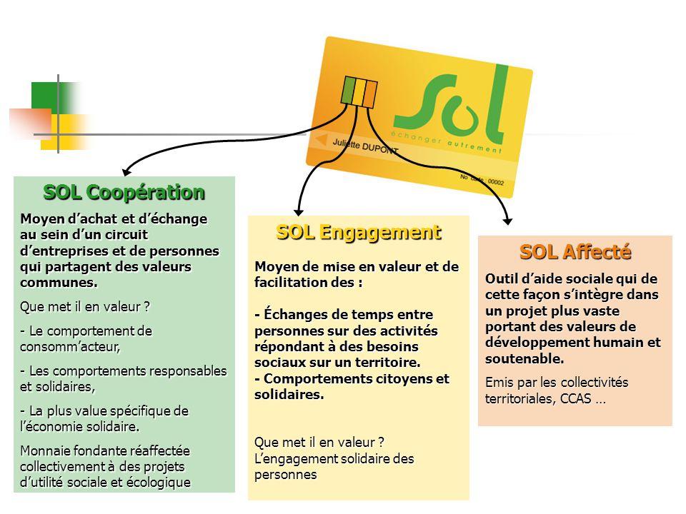 Sur chaque territoire, des acteurs des : Collectivités territoriales, Structures de lÉconomie Sociale et Solidaire Réseaux et acteurs associatifs Une association SOL qui regroupe lensemble des acteurs du projet.