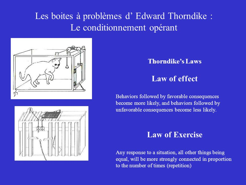 Les boites à problèmes d Edward Thorndike : Le conditionnement opérant Thorndikes Laws Law of effect Behaviors followed by favorable consequences become more likely, and behaviors followed by unfavorable consequences become less likely.