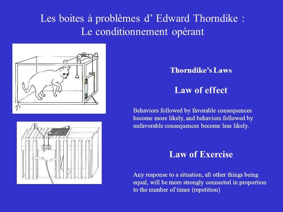 Les boites à problèmes d Edward Thorndike : Le conditionnement opérant Thorndikes Laws Law of effect Behaviors followed by favorable consequences beco
