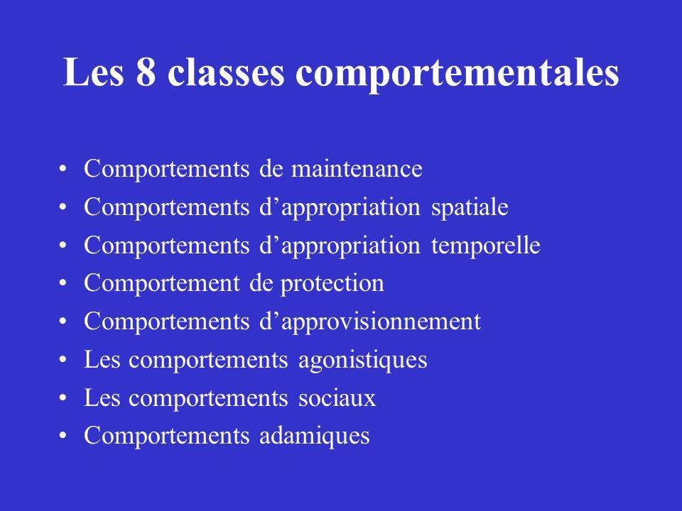 Les 8 classes comportementales Comportements de maintenance Comportements dappropriation spatiale Comportements dappropriation temporelle Comportement