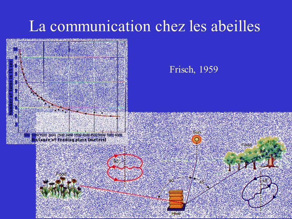 La communication chez les abeilles Frisch, 1959