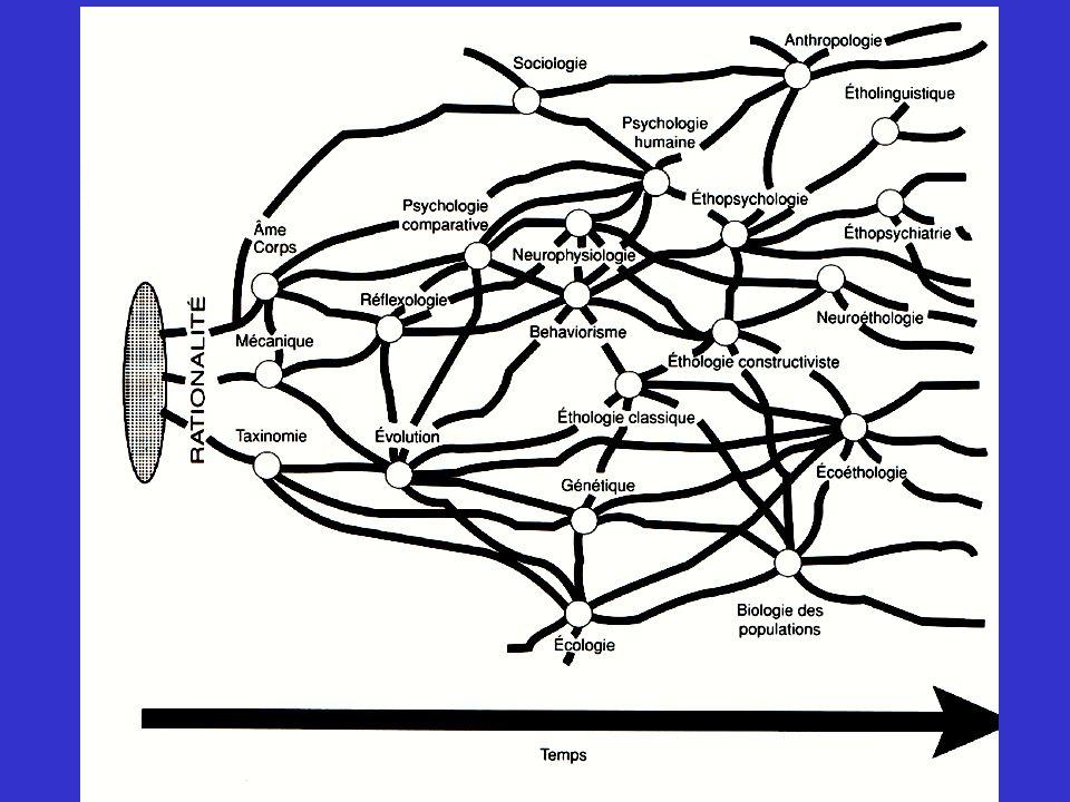 Léthologie classique Les pères fondateurs de léthologie moderne Prix Nobel de médecine et physiologie, 1973 Konrad Lorenz (1903-1989) Nikolaas Tinbergen (1907-1988) Karl von Frisch (1886-1982) Irenaus Eilb-Eibesfeldt (1928- ) Ethologie: Biologie du comportement (1982) Ethologie humaine