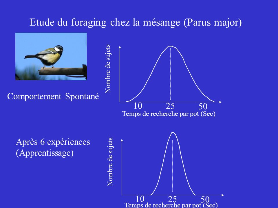 Etude du foraging chez la mésange (Parus major) Temps de recherche par pot (Sec) Nombre de sujets 25 10 50 Temps de recherche par pot (Sec) Nombre de