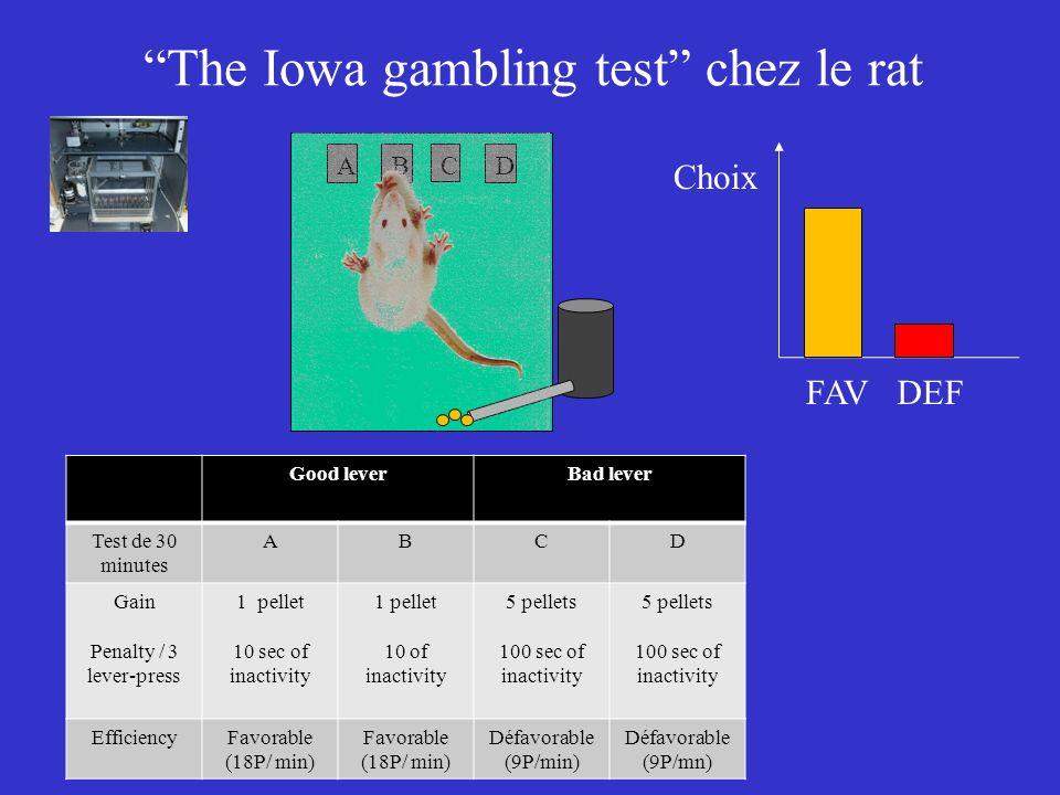 The Iowa gambling test chez le rat A BC D Good leverBad lever Test de 30 minutes ABCD Gain Penalty / 3 lever-press 1 pellet 10 sec of inactivity 1 pel