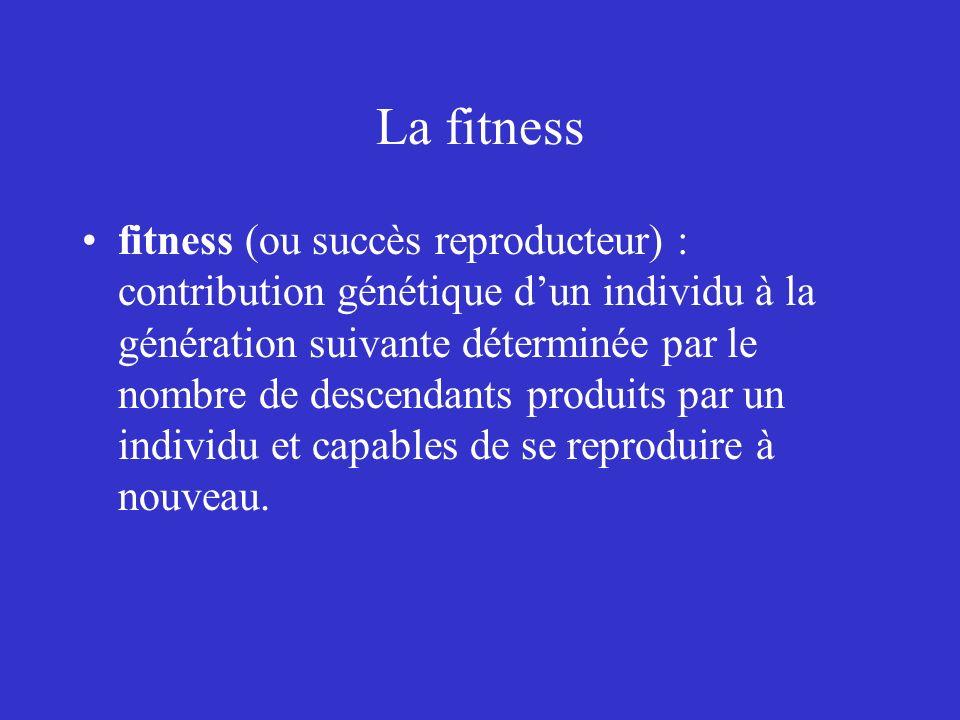 La fitness fitness (ou succès reproducteur) : contribution génétique dun individu à la génération suivante déterminée par le nombre de descendants pro