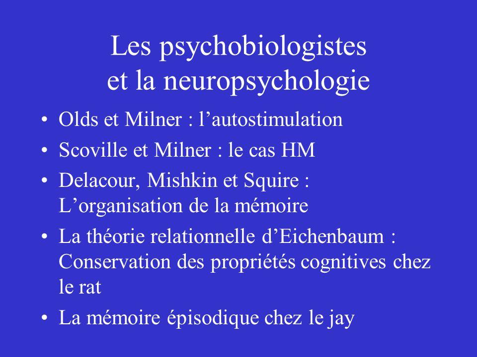 Les psychobiologistes et la neuropsychologie Olds et Milner : lautostimulation Scoville et Milner : le cas HM Delacour, Mishkin et Squire : Lorganisat
