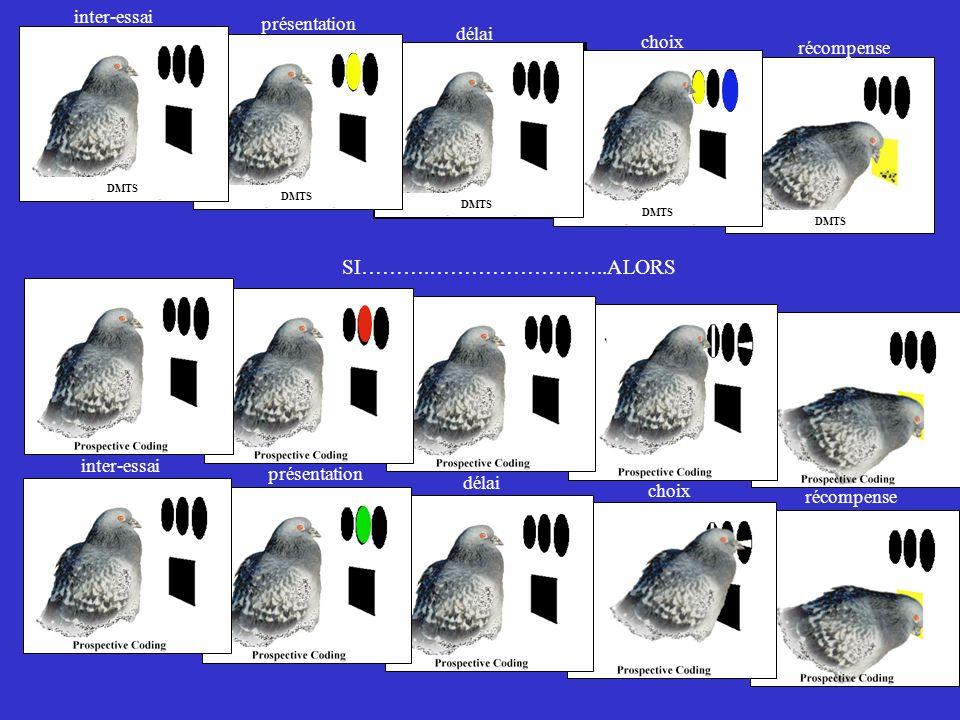 DMTS présentation délai choix inter-essai récompense présentation délai choix inter-essai récompense SI……….……………………..ALORS