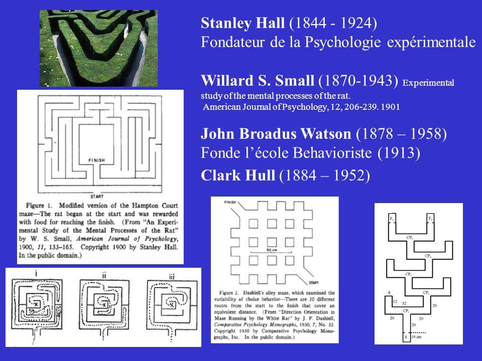 Stanley Hall (1844 - 1924) Fondateur de la Psychologie expérimentale Willard S. Small (1870-1943) Experimental study of the mental processes of the ra