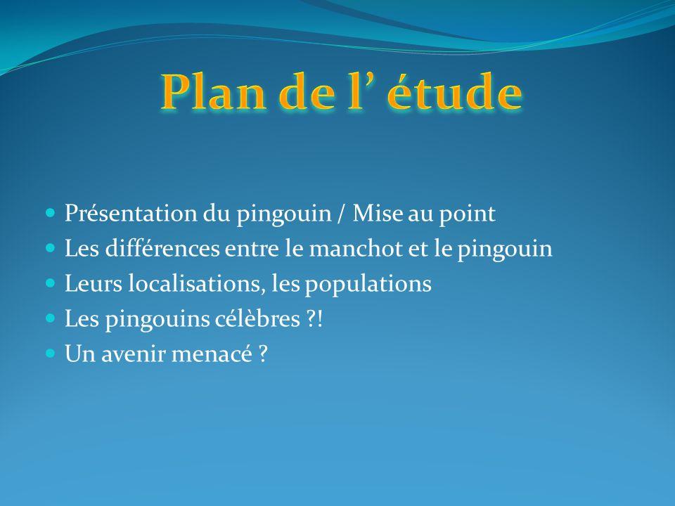 Présentation du pingouin / Mise au point Les différences entre le manchot et le pingouin Leurs localisations, les populations Les pingouins célèbres ?.