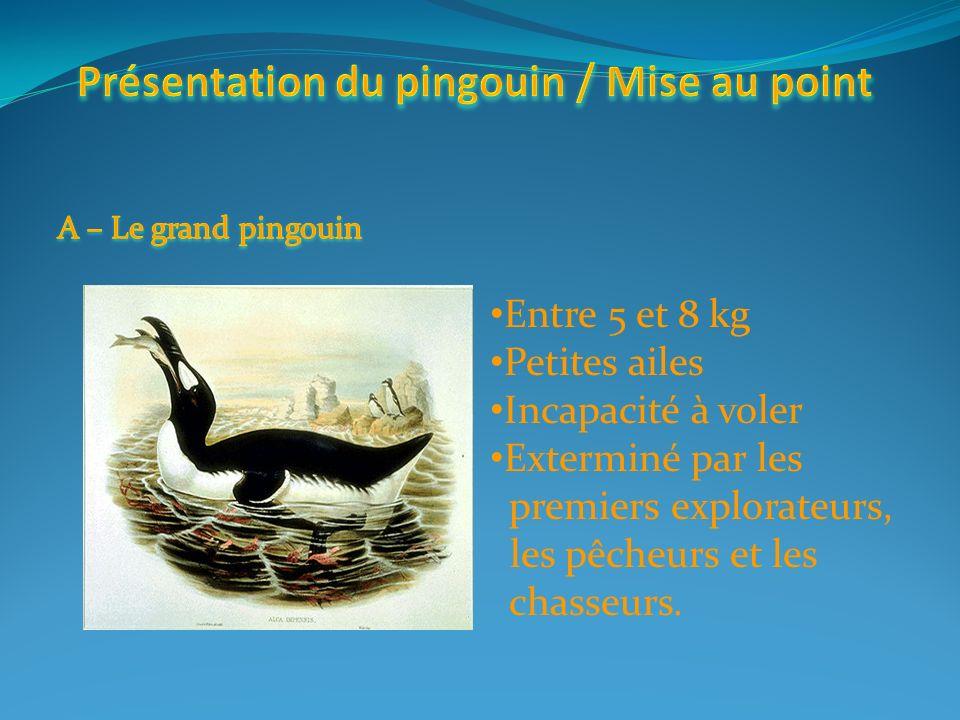 Présentation du pingouin / Mise au point Les différences entre le manchot et le pingouin Leurs localisations, les populations Les pingouins célèbres ?