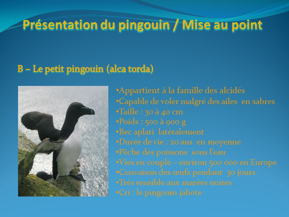 Entre 5 et 8 kg Petites ailes Incapacité à voler Exterminé par les premiers explorateurs, les pêcheurs et les chasseurs.