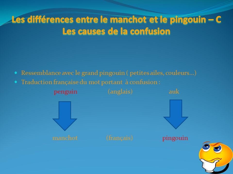 Ressemblance avec le grand pingouin ( petites ailes, couleurs…) Traduction française du mot portant à confusion : penguin (anglais)auk manchot (français) pingouin