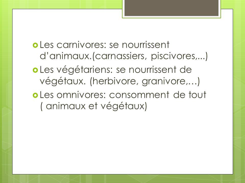 Les carnivores: se nourrissent danimaux.(carnassiers, piscivores,...) Les végétariens: se nourrissent de végétaux. (herbivore, granivore,…) Les omnivo