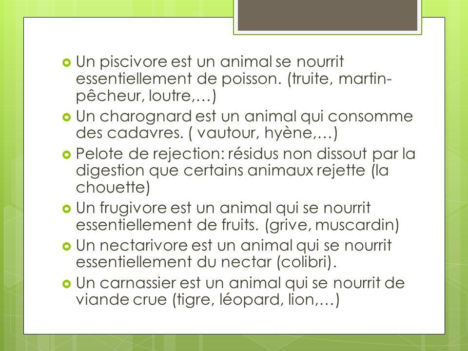 Un piscivore est un animal se nourrit essentiellement de poisson. (truite, martin- pêcheur, loutre,…) Un charognard est un animal qui consomme des cad