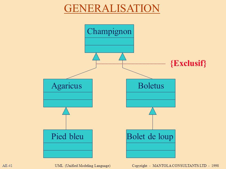 GENERALISATION AE-41 Champignon Bolet de loup BoletusAgaricus Pied bleu {Exclusif} UML (Unified Modeling Language) Copyright - MANTOLA CONSULTANTS LTD