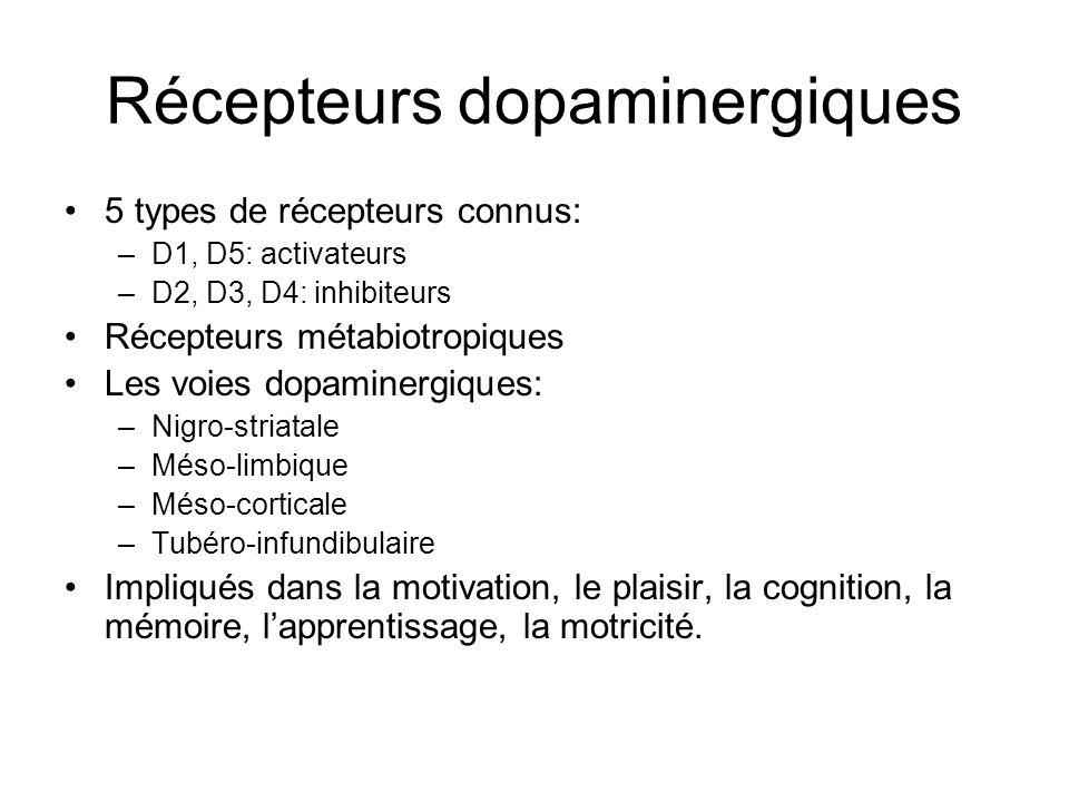 Récepteurs dopaminergiques 5 types de récepteurs connus: –D1, D5: activateurs –D2, D3, D4: inhibiteurs Récepteurs métabiotropiques Les voies dopaminer