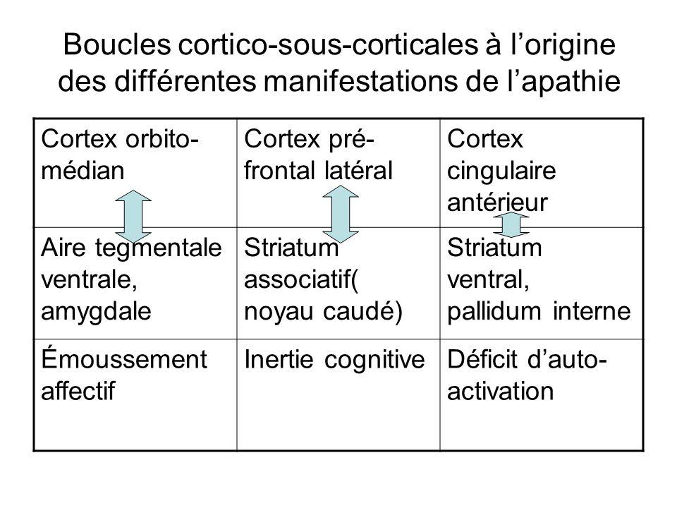 Boucles cortico-sous-corticales à lorigine des différentes manifestations de lapathie Cortex orbito- médian Cortex pré- frontal latéral Cortex cingula