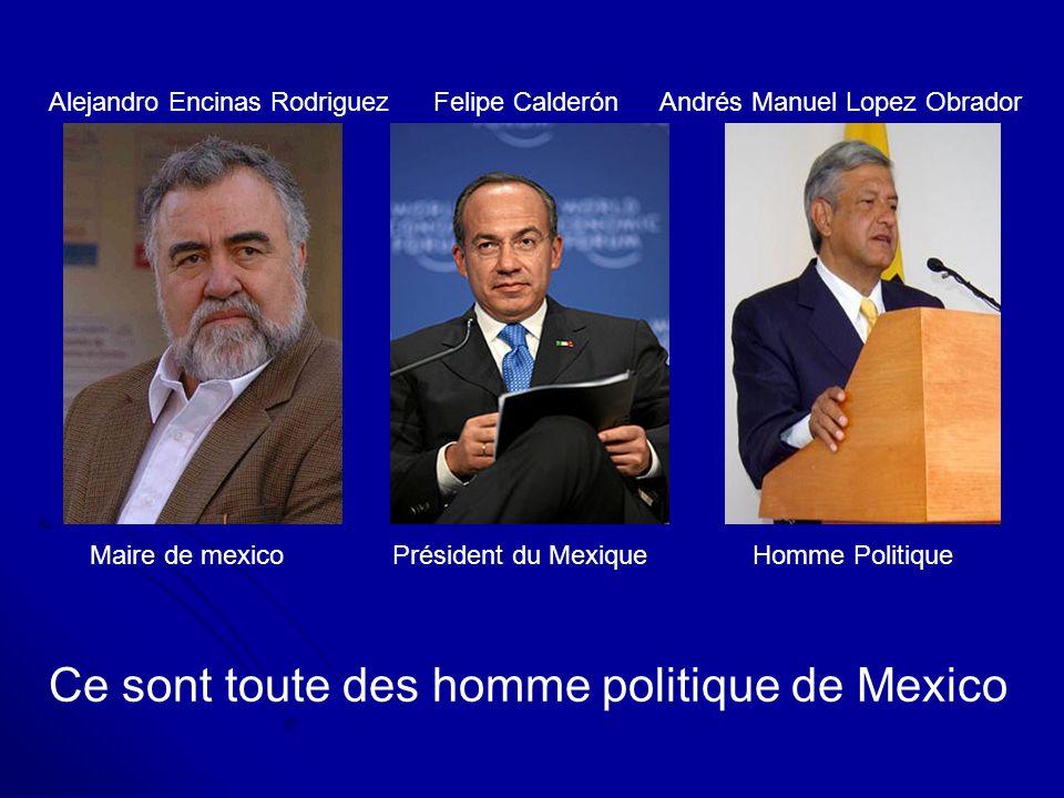 Alejandro Encinas Rodriguez Maire de mexico Felipe Calderón Président du Mexique Andrés Manuel Lopez Obrador Homme Politique Ce sont toute des homme p