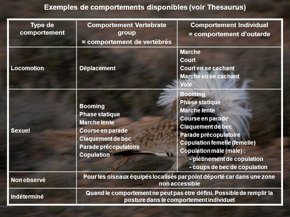 Type de comportement Comportement Vertebrate group = comportement de vertébrés Comportement Individual = comportement doutarde LocomotionDéplacement M