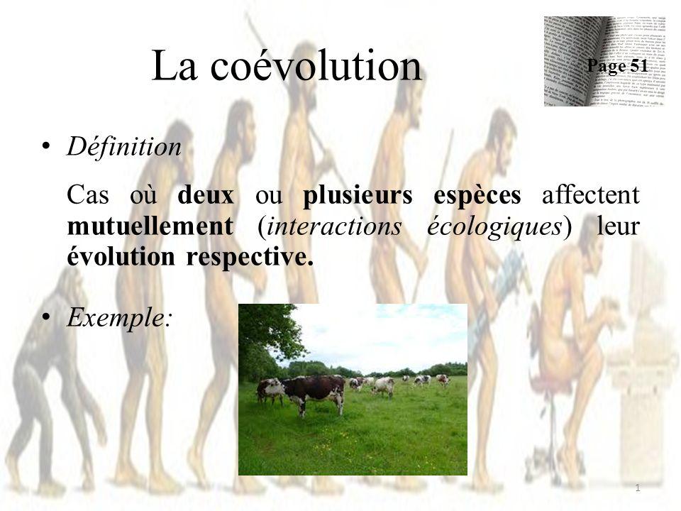 Définition Cas où deux ou plusieurs espèces affectent mutuellement (interactions écologiques) leur évolution respective. Exemple: La coévolution Page