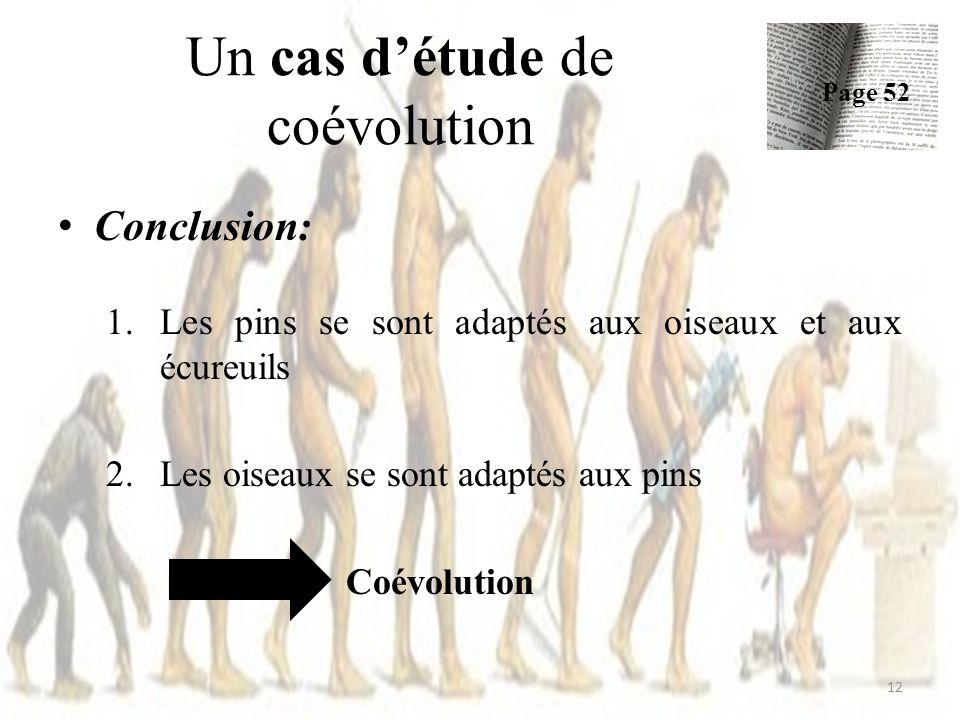 Un cas détude de coévolution Conclusion: 1.Les pins se sont adaptés aux oiseaux et aux écureuils 2.Les oiseaux se sont adaptés aux pins Coévolution 12