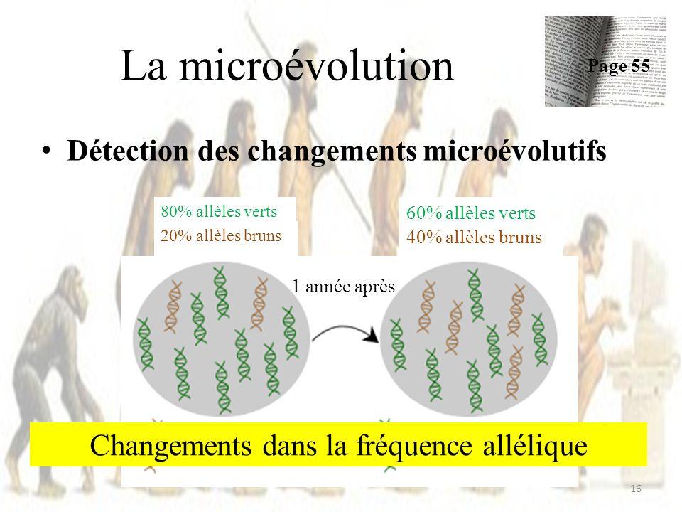 Détection des changements microévolutifs La microévolution Page 55 16 80% allèles verts 60% allèles verts 20% allèles bruns 40% allèles bruns gènes po
