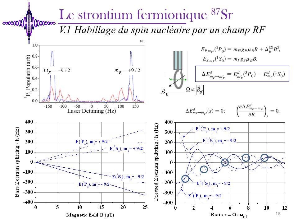 Le strontium fermionique 87 Sr V.1 Habillage du spin nucléaire par un champ RF 16