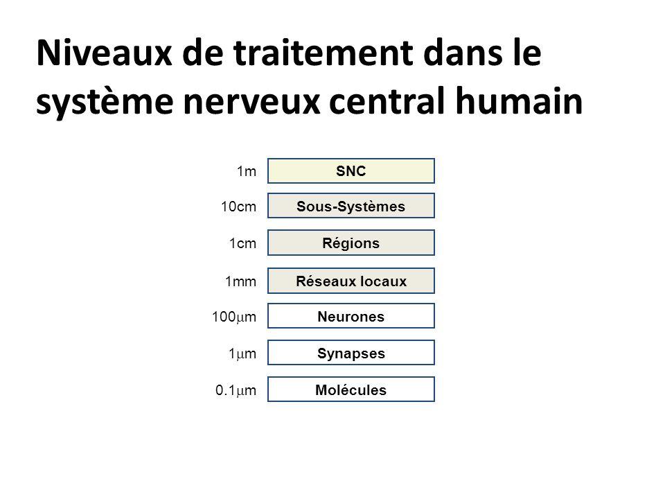 Niveaux de traitement dans le système nerveux central humain Molécules 0.1 m Synapses 1 m Neurones 100 m Réseaux locaux 1mm Régions 1cm Sous-Systèmes 10cm SNC 1m