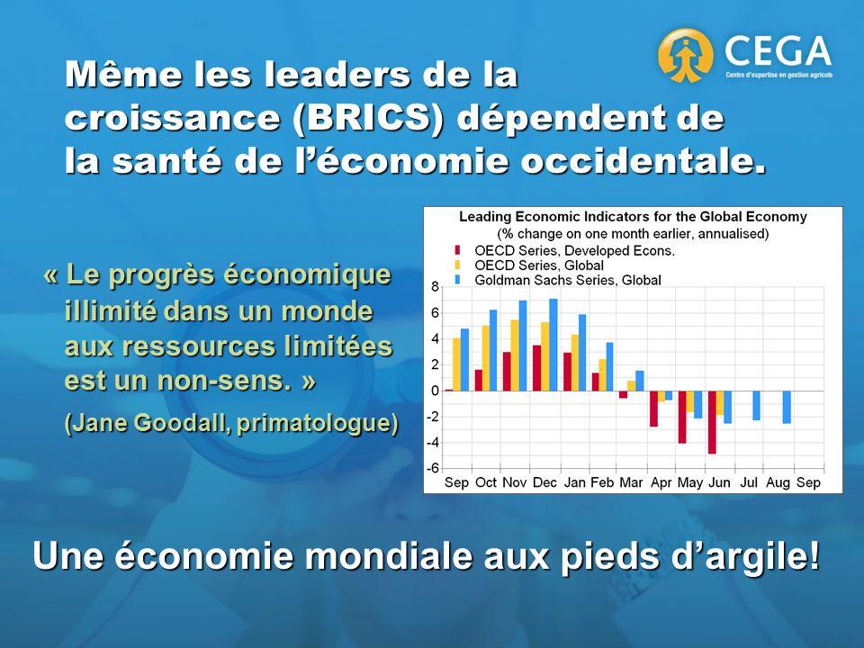 Même les leaders de la croissance (BRICS) dépendent de la santé de léconomie occidentale. « Le progrès économique illimité dans un monde aux ressource
