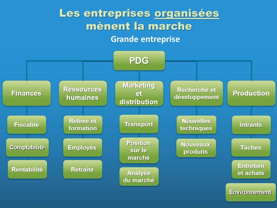 PDGPDG FinancesFinances Ressources humaines Recherche et développement ProductionProduction FiscalitéFiscalité ComptabilitéComptabilité Relève et form