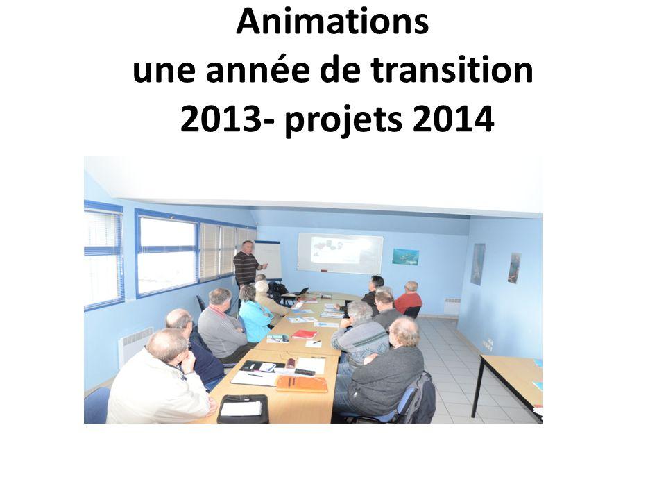 Animations une année de transition 2013- projets 2014