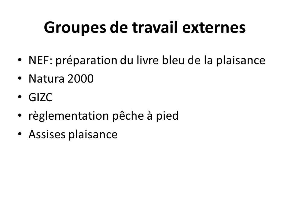Groupes de travail externes NEF: préparation du livre bleu de la plaisance Natura 2000 GIZC règlementation pêche à pied Assises plaisance