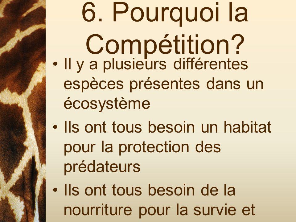 6. Pourquoi la Compétition? Il y a plusieurs différentes espèces présentes dans un écosystème Ils ont tous besoin un habitat pour la protection des pr