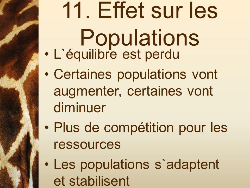 11. Effet sur les Populations L`équilibre est perdu Certaines populations vont augmenter, certaines vont diminuer Plus de compétition pour les ressour
