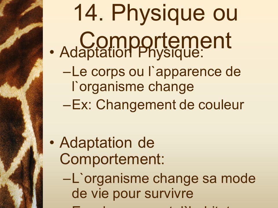 14. Physique ou Comportement Adaptation Physique: –Le corps ou l`apparence de l`organisme change –Ex: Changement de couleur Adaptation de Comportement