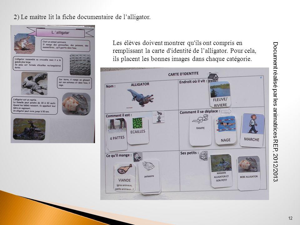 Document réalisé par les animatrices REP, 2012/2013. 12 2) Le maître lit la fiche documentaire de lalligator. Les élèves doivent montrer qu'ils ont co