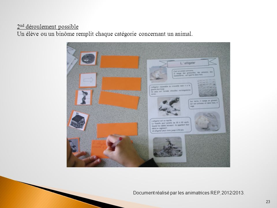 Document réalisé par les animatrices REP, 2012/2013. 23 2 nd déroulement possible Un élève ou un binôme remplit chaque catégorie concernant un animal.