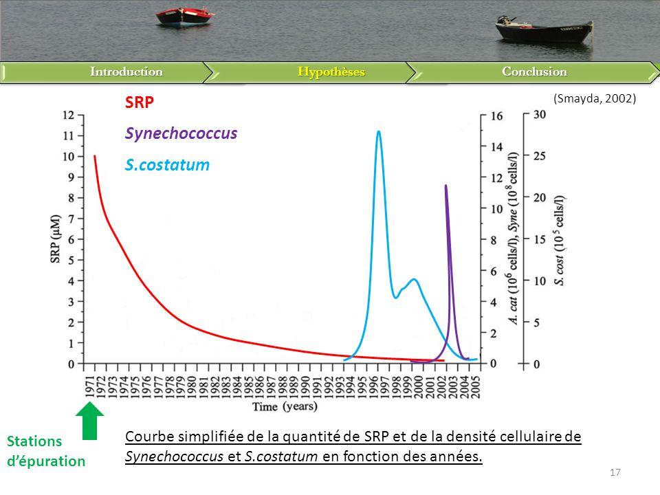 IntroductionHypothèsesConclusion 17 SRP Synechococcus S.costatum Stations dépuration Courbe simplifiée de la quantité de SRP et de la densité cellulai