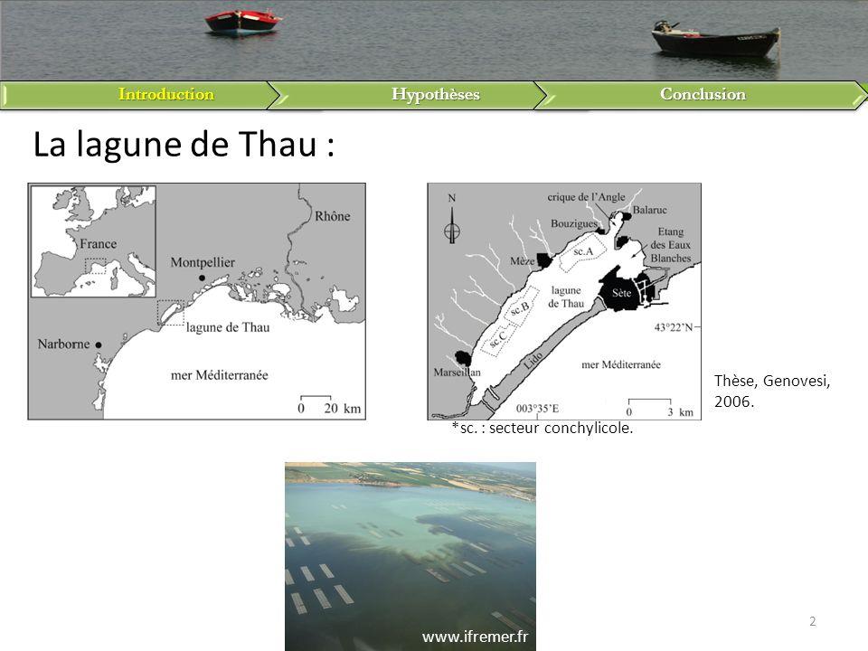 *sc. : secteur conchylicole.IntroductionHypothèsesConclusion 2 La lagune de Thau : Thèse, Genovesi, 2006. www.ifremer.fr