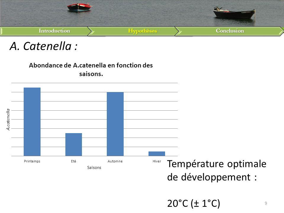 IntroductionHypothèsesConclusion 9 A. Catenella : Température optimale de développement : 20°C (± 1°C)